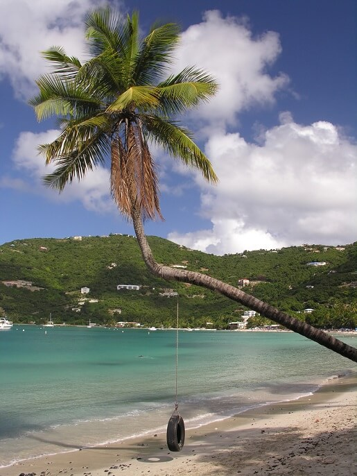 palme-strand